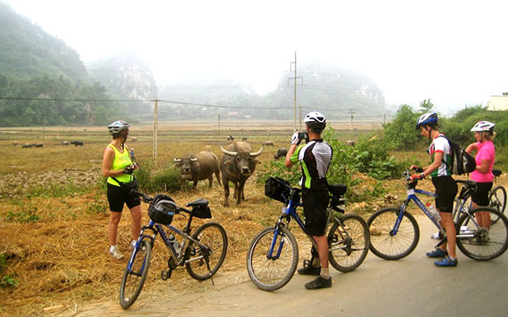 Full Day Mountain Biking From Sapa To Binh Lu Market