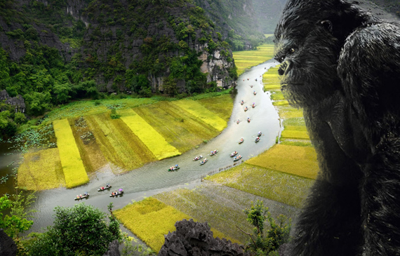 Kong: Skull Island Tour in Vietnam - Not in movie anymore, but real experience