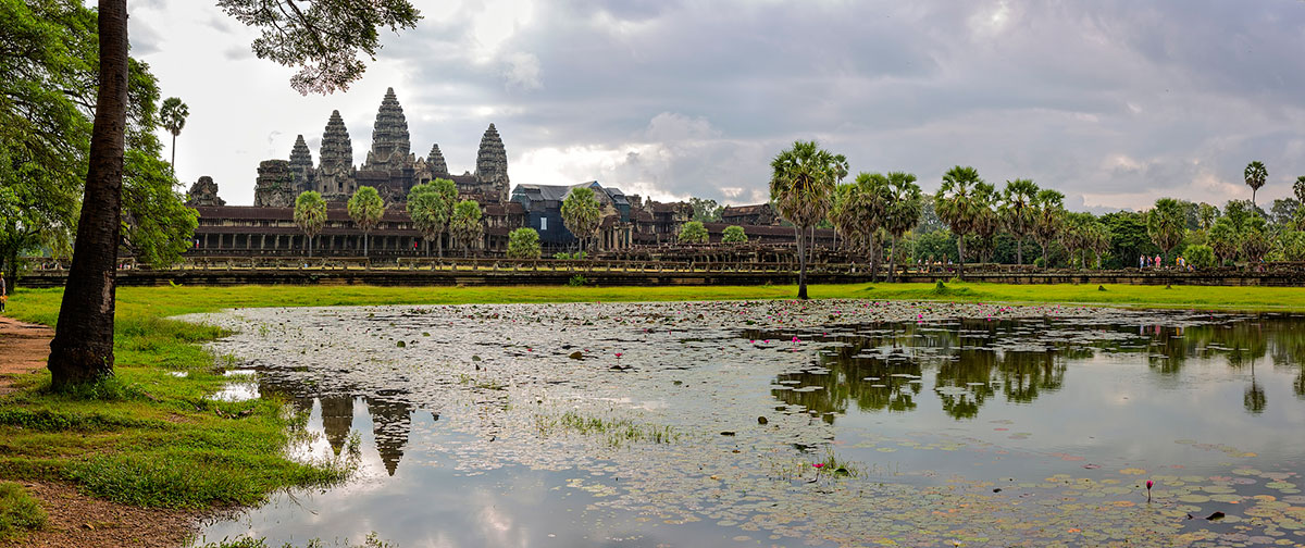 Angkor Wat overview with lyly flower